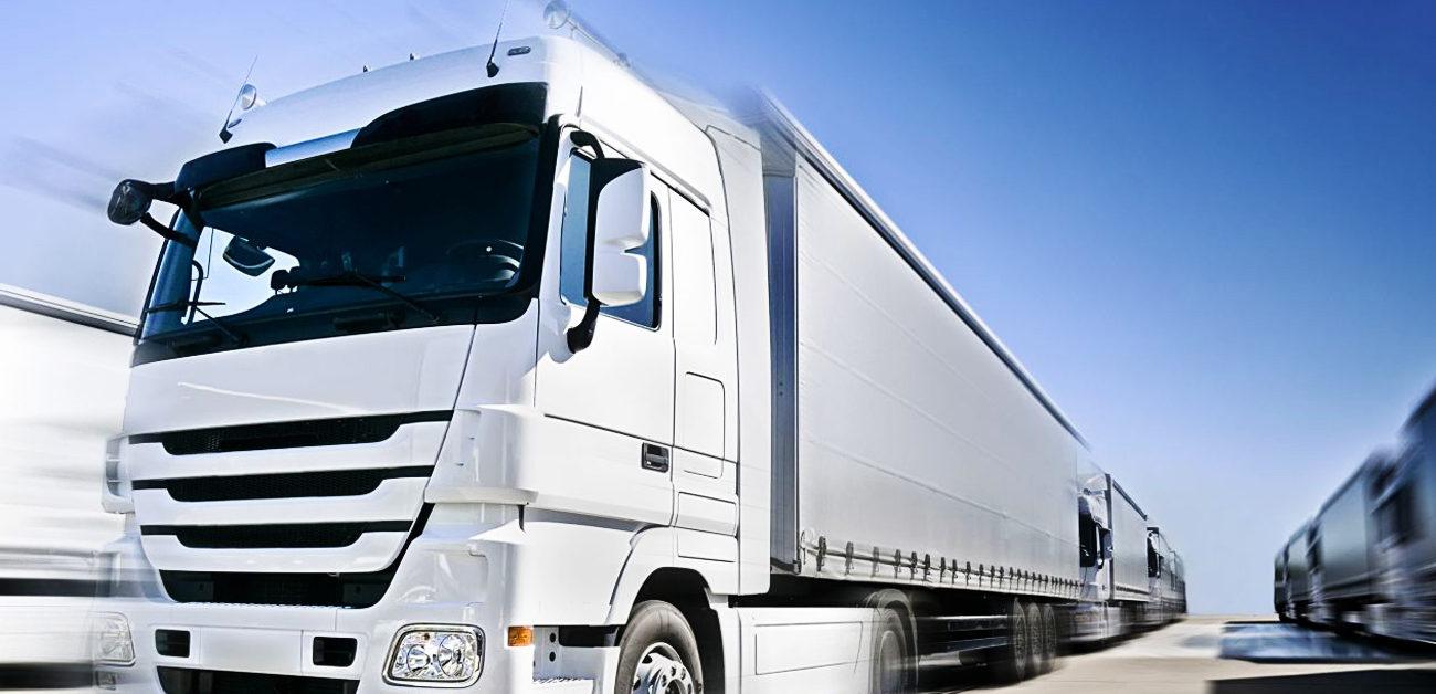 Refrigerated Transport Muveo